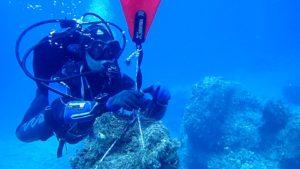 Aegean Rebreath Δράση Νάξου Φωτογραφίες