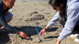 Aegean Rebreath scientific team measuring findings from marine litter