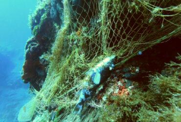 Underwater Cleaning in Antiparos October 2020   Aegean Rebreath